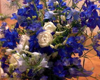 080505_flowers